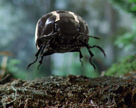Volkswagen 2012 Black-Beetle Commercial XLV Super Bowl Official Photo is released